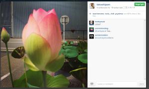 takashipom su Instagram11